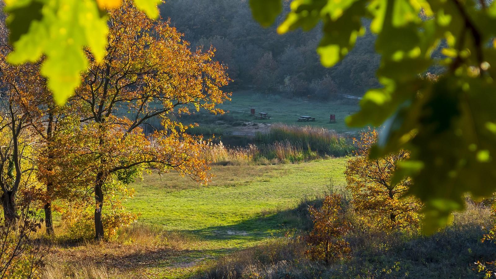 Bakancslistás helyek a Balaton körül – Köcsi-tó