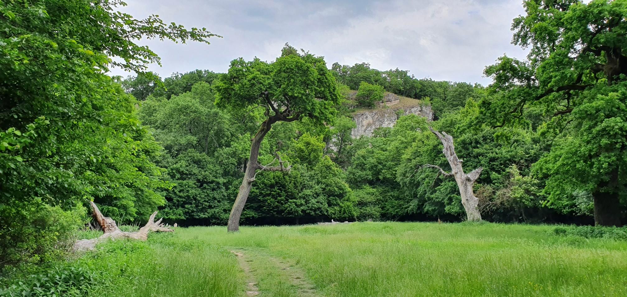 Bakancslistás helyek a Balaton körül – Tekeres-völgy, Veszprém