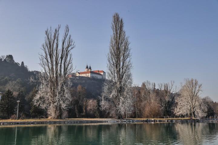 Különös fehér permet a tihanyi kastély fáin