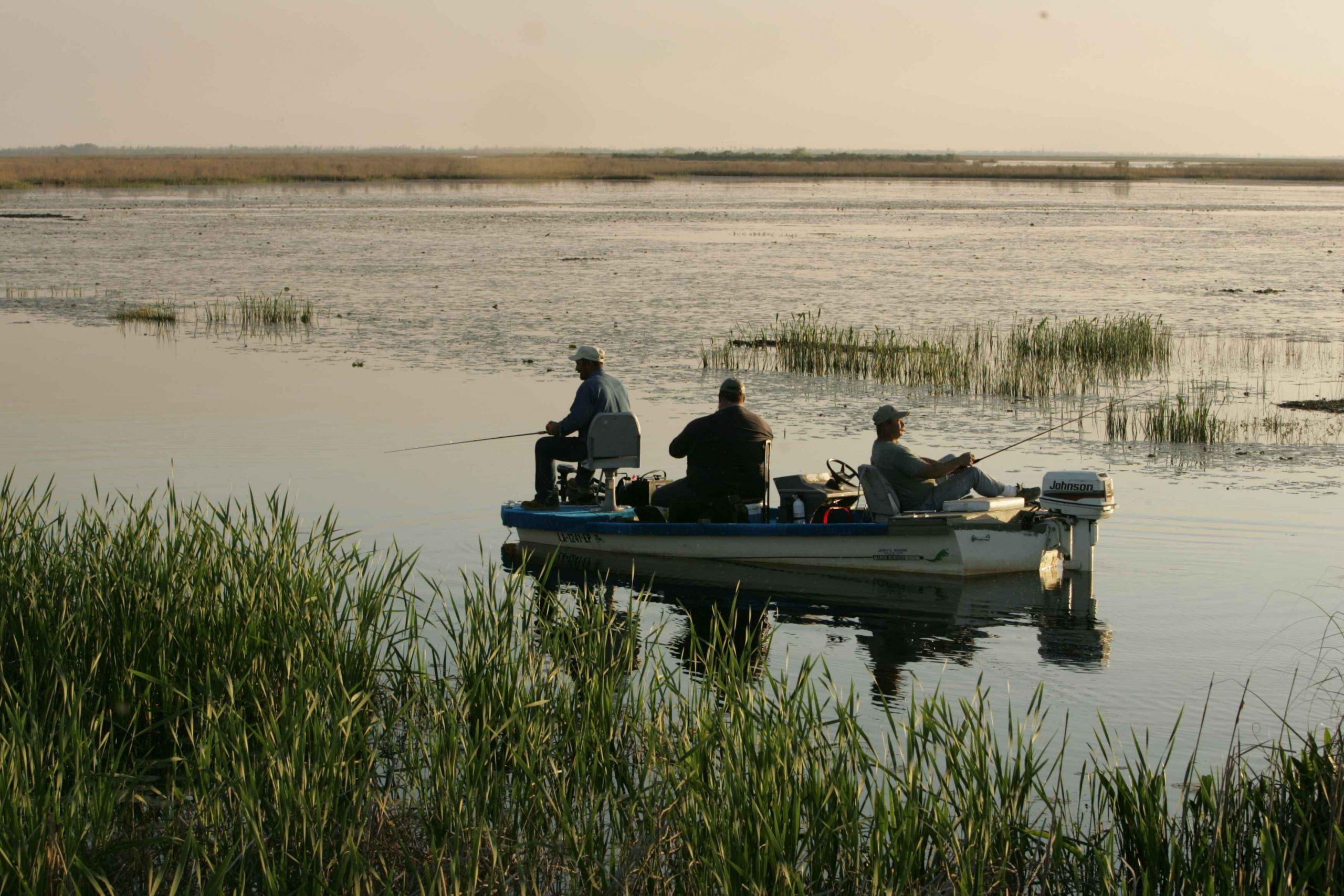 Feloldották a csónakról horgászás áprilisi tilalmát a Balatonnál