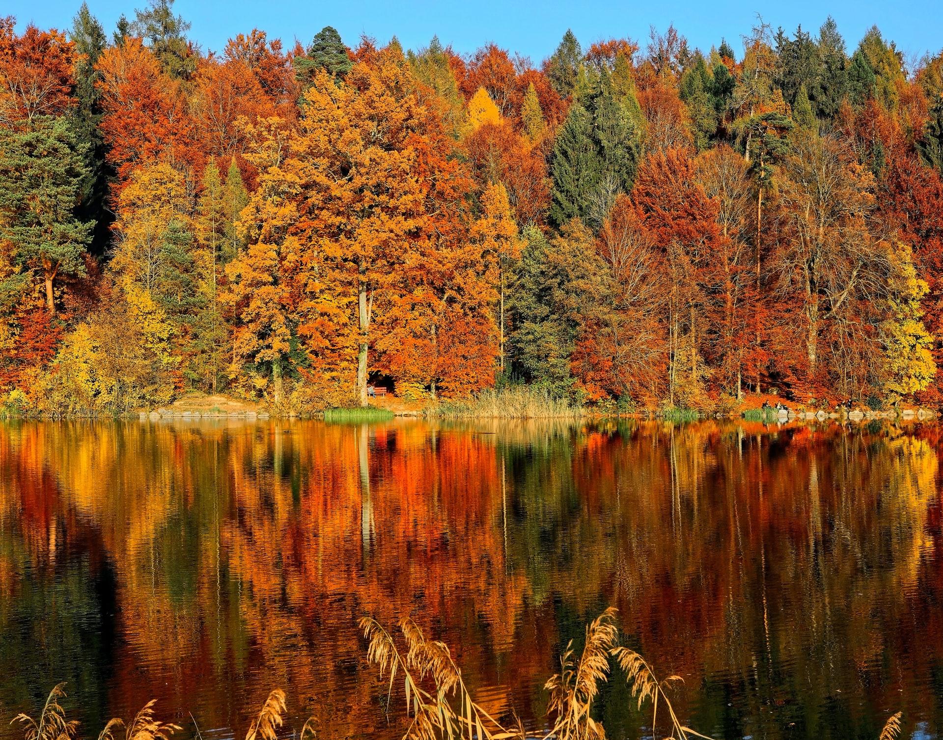 SUP tippek őszre – erre figyelj oda